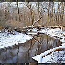 Snowy Creek by angelcher