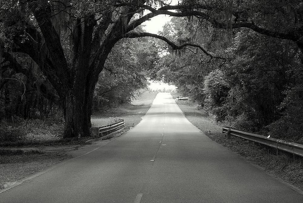 Southern Country Oak by pianoann