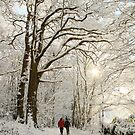 Couple Walking in the Snowy Woods by Alyson Fennell