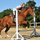 The Quarter Horse Jump by angelcher
