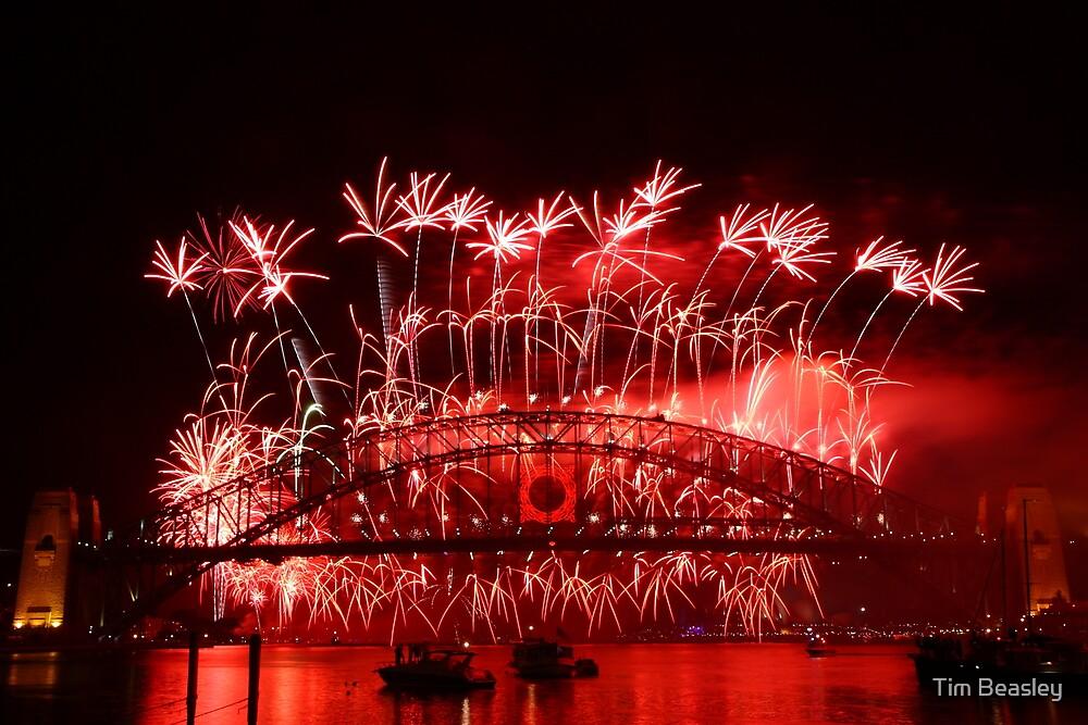 Sydney Fireworks 2009-2010 p1 by Tim Beasley