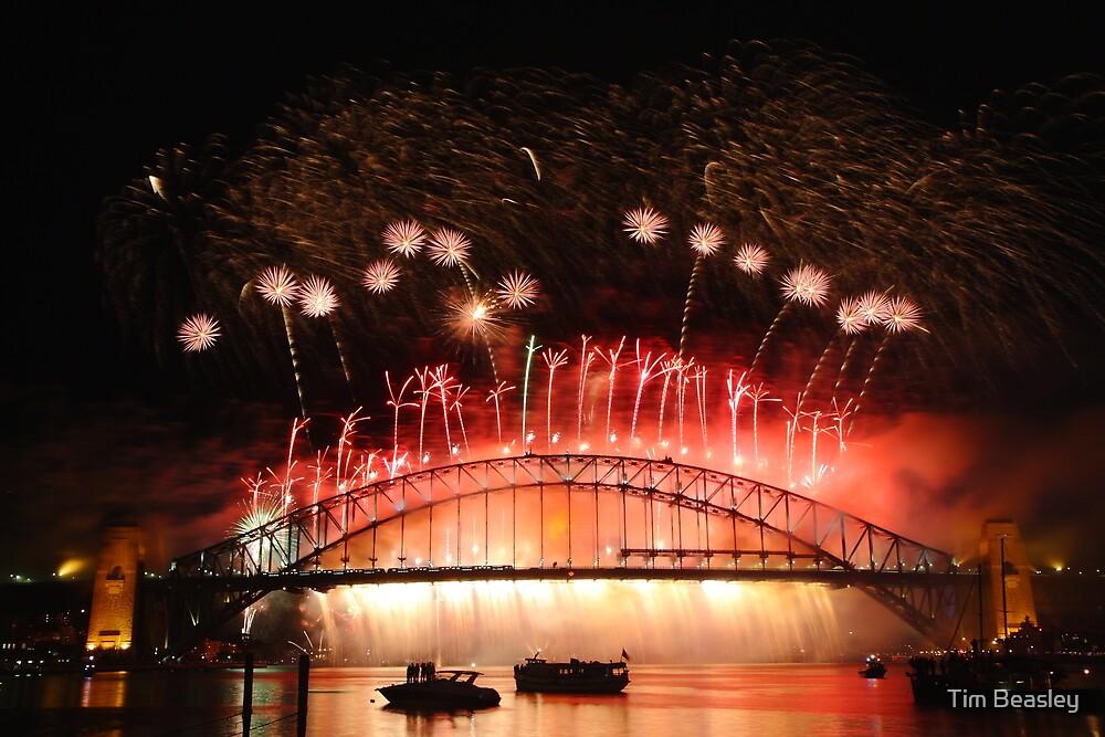 Sydney Fireworks 2009-2010 p11 by Tim Beasley