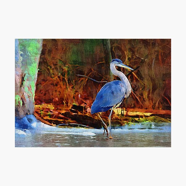 Heron on Ice Texture Painting Photographic Print