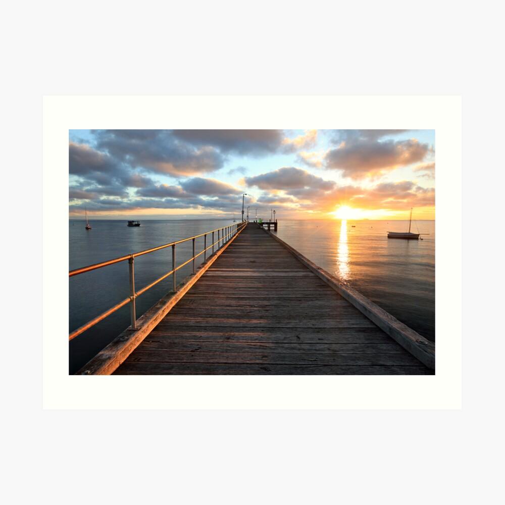 Morning Glory, Mornington Peninsula, Australia Art Print