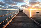 Morning Glory, Mornington Peninsula, Australia by Michael Boniwell