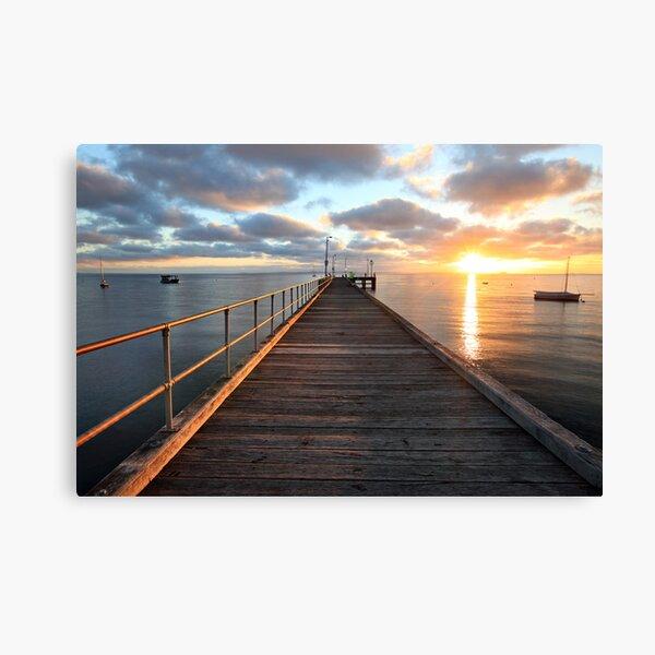 Morning Glory, Mornington Peninsula, Australia Canvas Print