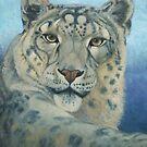 Snow Leopard by Susan Fox