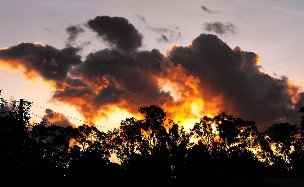 Fire in the Sky by Kay Coates