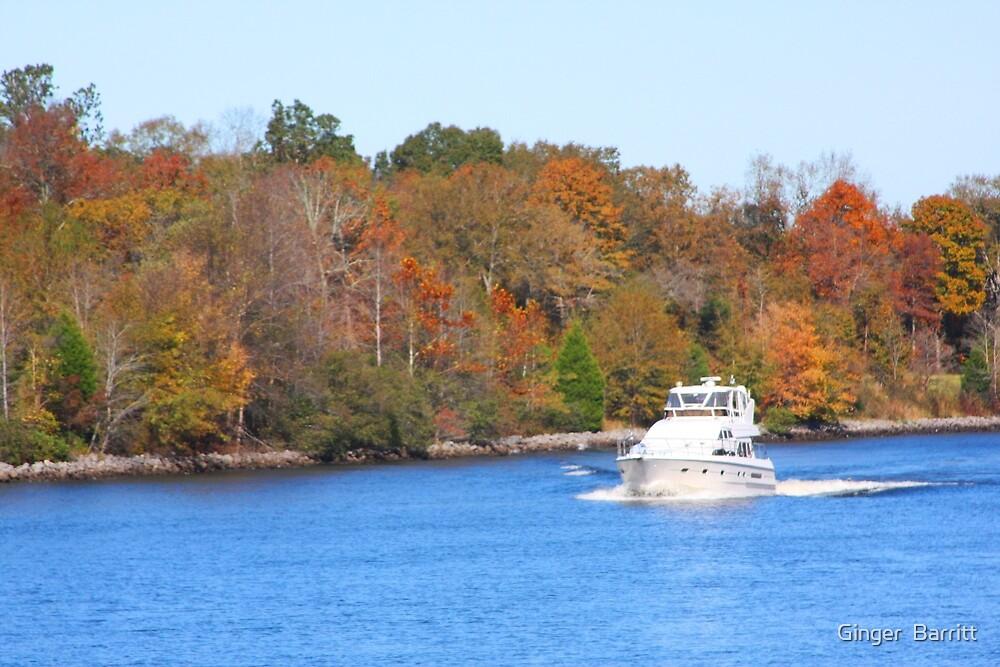 Autumn Sailing by Ginger  Barritt