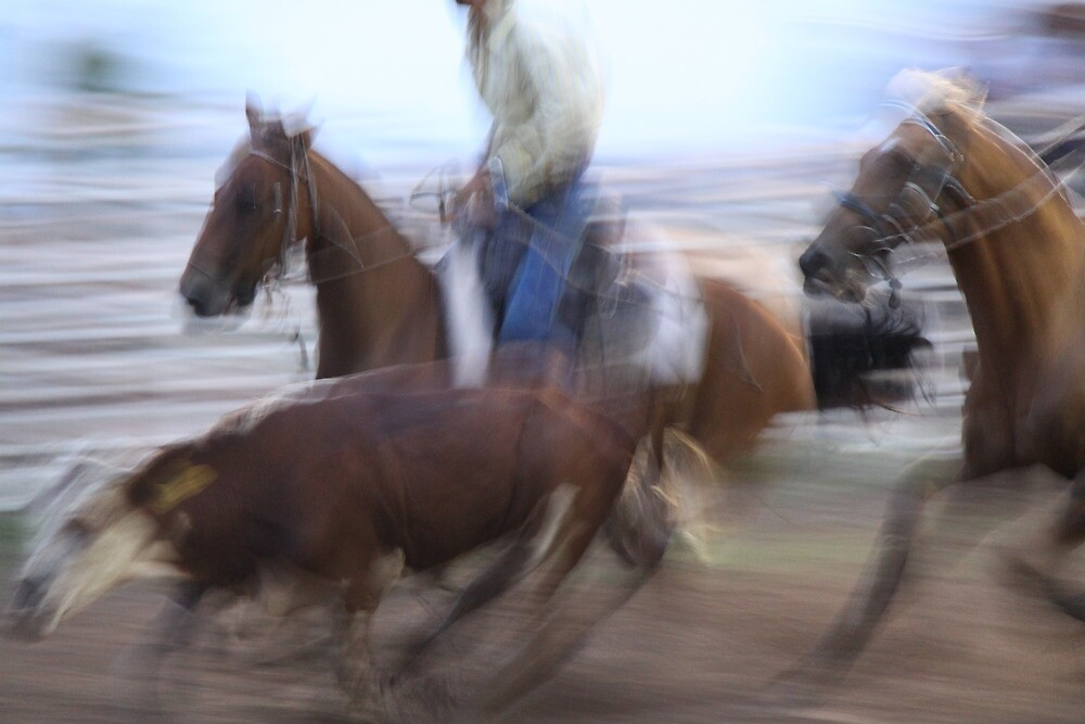 A powerful blur. by StaceyH
