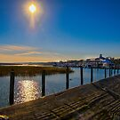 The Marina by TJ Baccari Photography