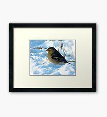 Snow Bird Framed Print