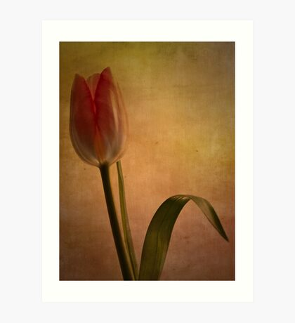 Looking forward to spring Art Print