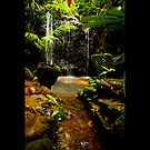 water fall paronella by Ron  Wilson
