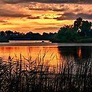 Sunset On Horseshoe Pond - Erie, PA by Kathy Weaver