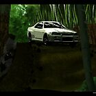 Skyline and Bamboo by xplor-r