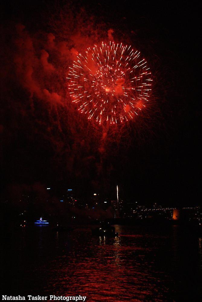 NYE Fireworks Sydney by porky84