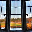 Autumn Window by Vicki Spindler (VHS Photography)
