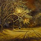 my winter night by edisandu