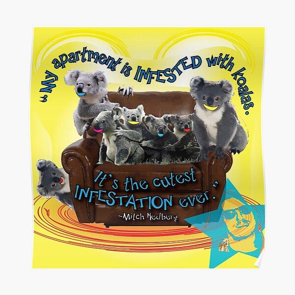 Koala Infestation Poster