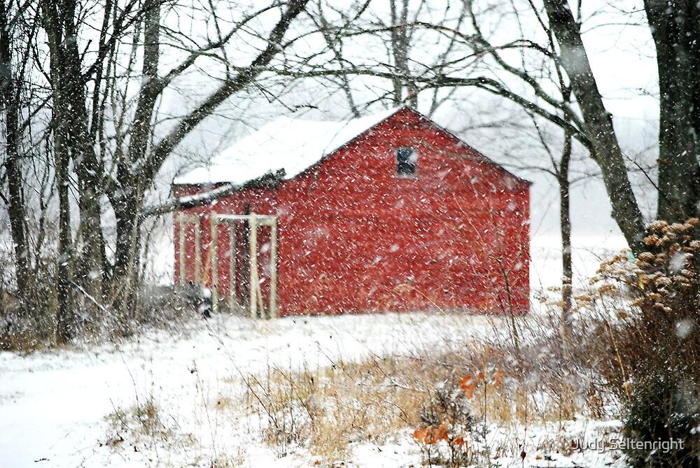 Ironwood Rd Barn by Judy Seltenright