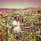 Vickie in the Corn by Edward Henzi