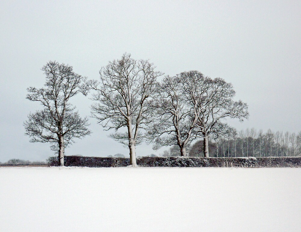 Across a snowy field in Bintree Norfolk by johnny2sheds