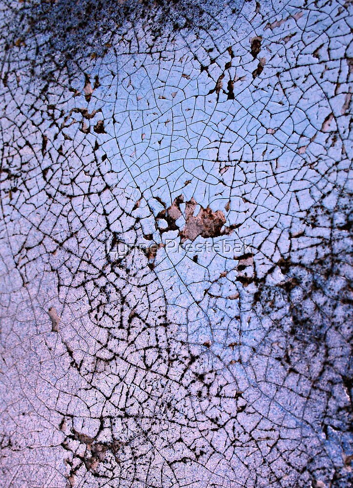 ...not what its cracked up to be... by Lynne Prestebak