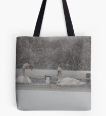 And You Just Had To Fight For This Place............ Tote Bag