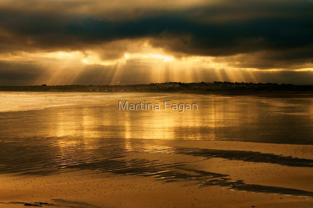 Donabate Strand in December by Martina Fagan