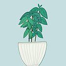 Kaffeepflanze von Jacqueline Hurd