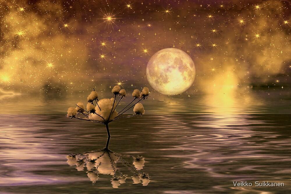 The moon and the stars by Veikko  Suikkanen