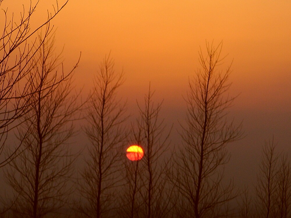 here comes the sun!!!!!!! by Richard Thurley