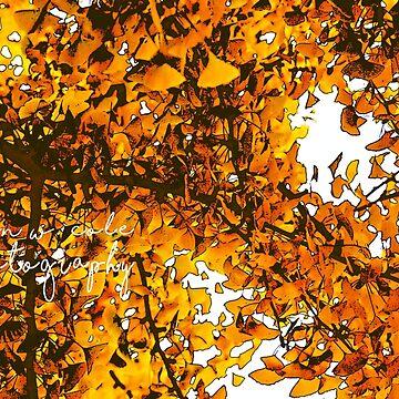 Ginko Tree In Fall - Sacramento by BryanSoCal