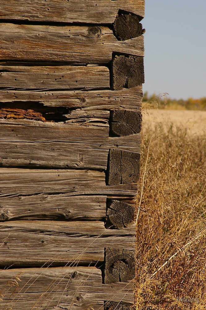 Loghouse building detail by Mowny
