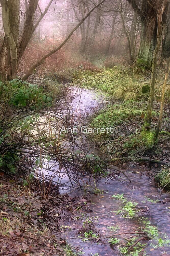 Mossy Brook by Ann Garrett