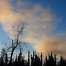 Smoke from our stove by MaeBelle