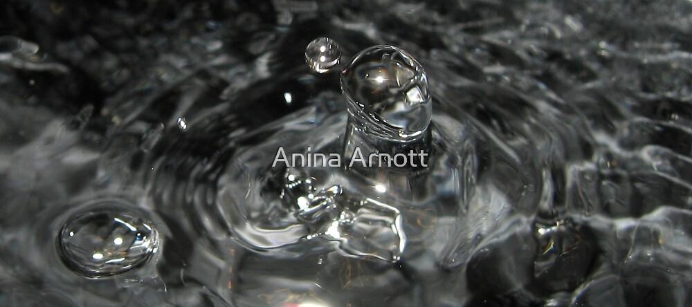 T1000 Regenerates by Anina Arnott
