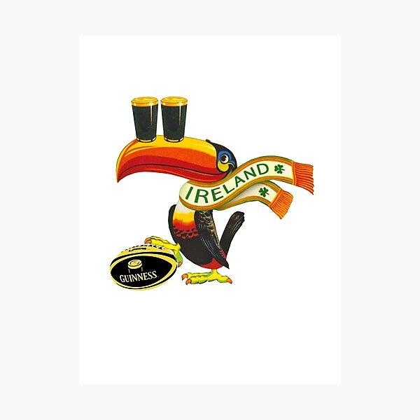Ireland toucan Photographic Print