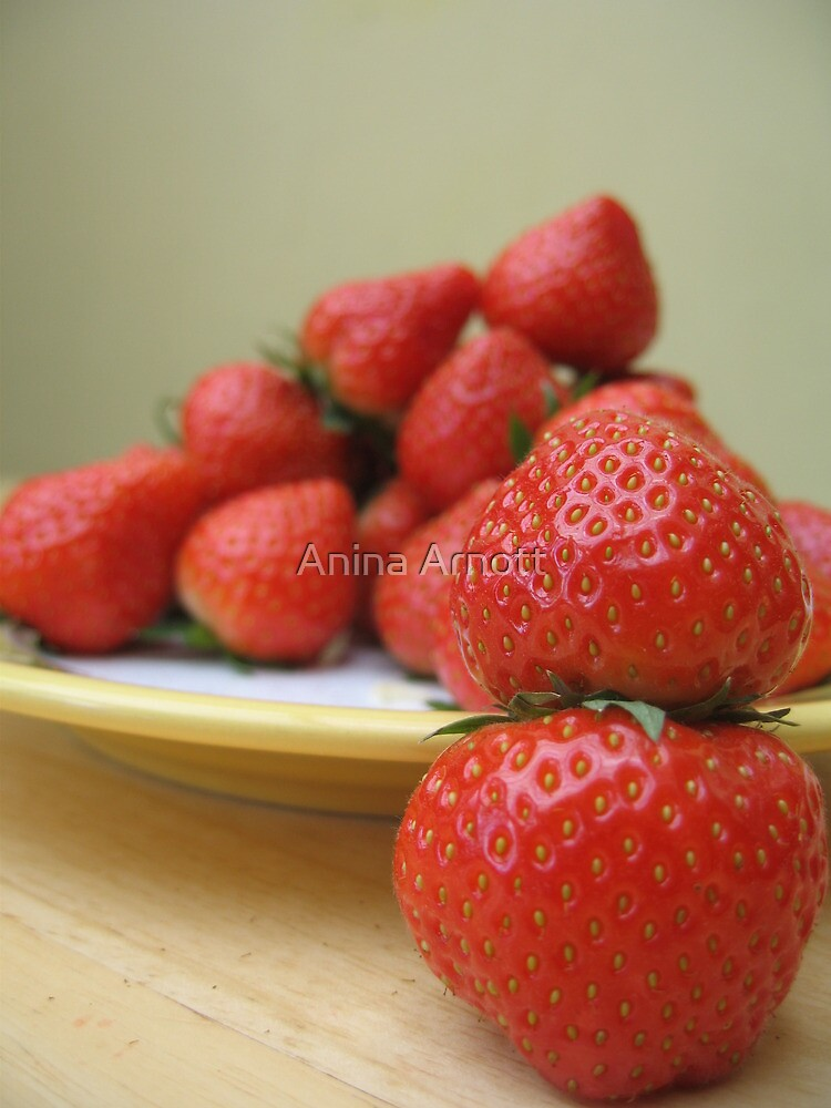 Strawberries by Anina Arnott