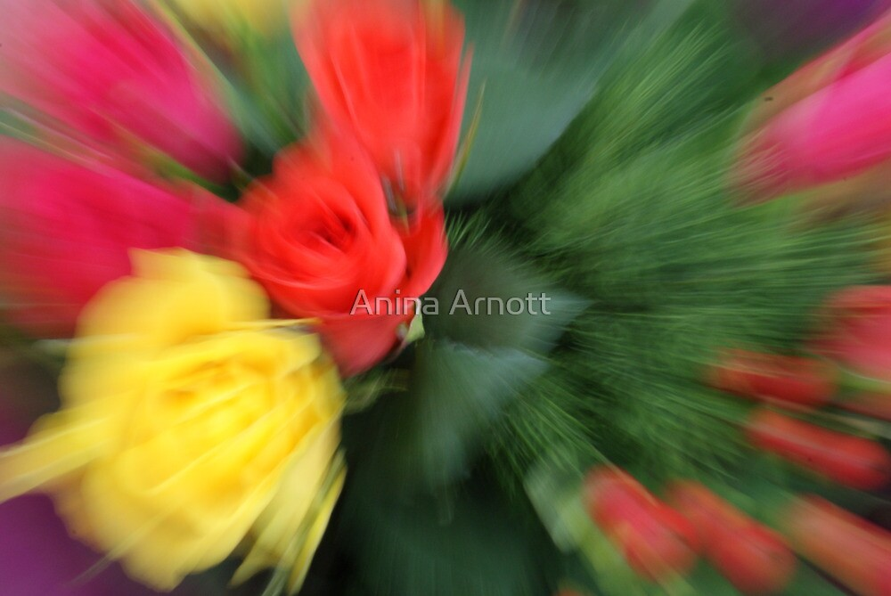 Zoom Blur Flowers by Anina Arnott
