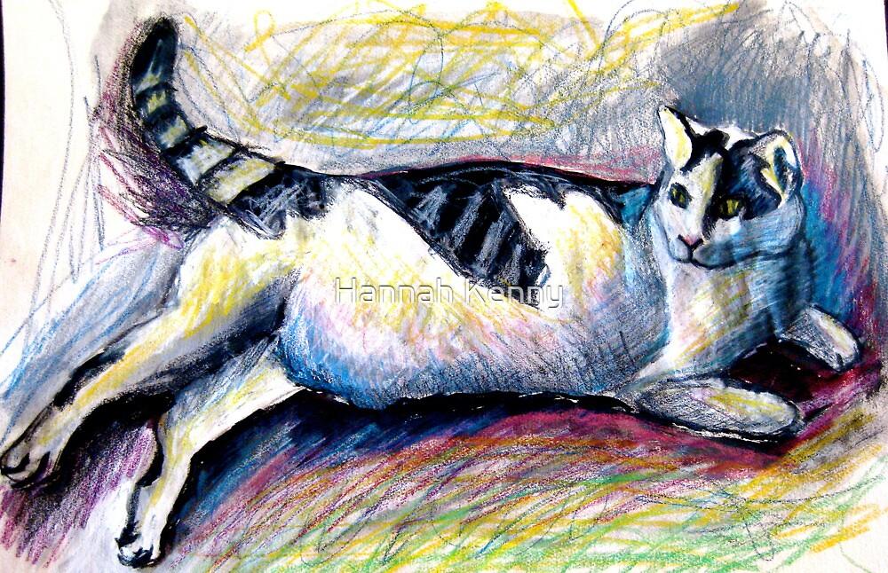 Tummy Cat by Hannah Kenny
