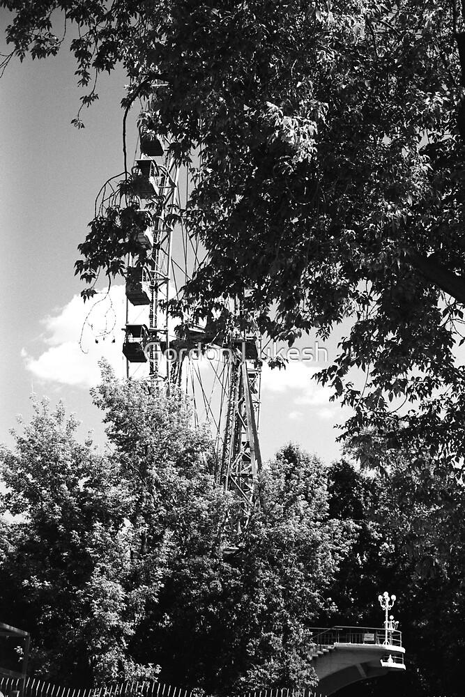Ferris Wheel Gorky Park by Gordon Lukesh