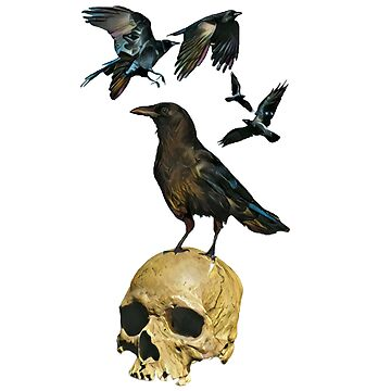 CROWS SKULL by Matterotica