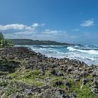 A great day in paradise. by ROBERT NIEDERRITER