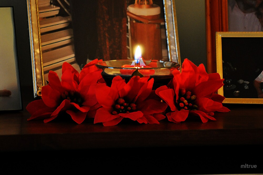 Poinsettia Table Decoration by mltrue