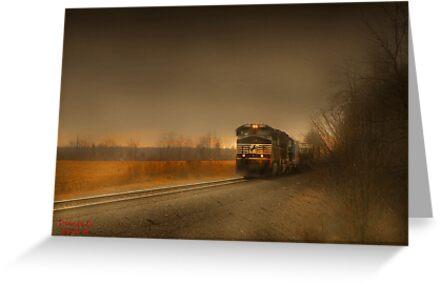""""""" Rail  """"  by canonman99"""