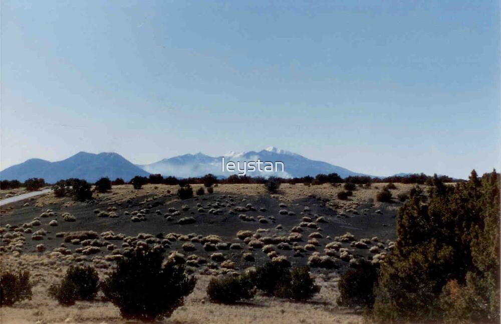 The Lava Field by leystan