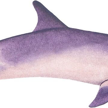 Pink & Purple Pastel Dolphin by thecuriouswild