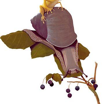 Garden Snail & Golden Frog by thecuriouswild